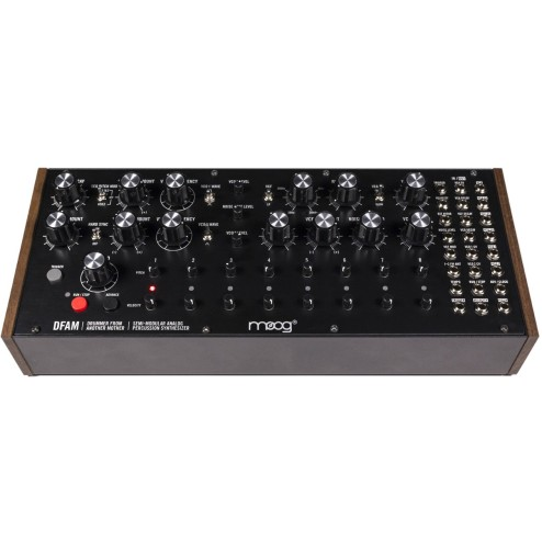 MOOG DFAM Sintetizzatore e Drum Machine Analogica